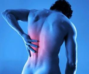 the causes of back pain